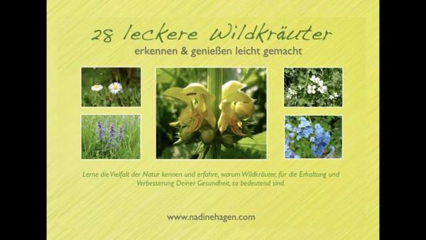 """E-Book """"28 leckere Wildkräuter erkennen und genießen leicht gemacht"""" von Nadine Hagen"""